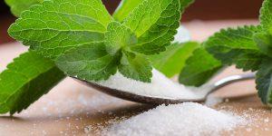 Saldiklis Stevia – tobulas cukraus pakaitalas. Sporto klubas OAZIS Šilutė
